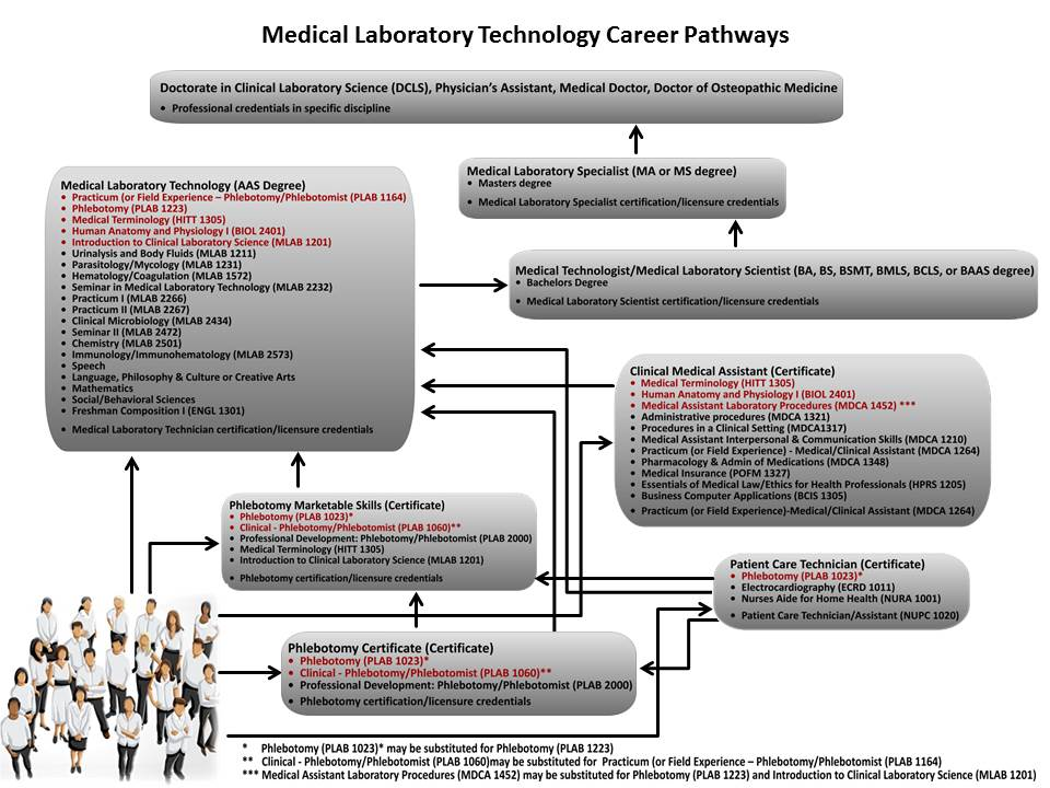 Amarillo College Career Pathways